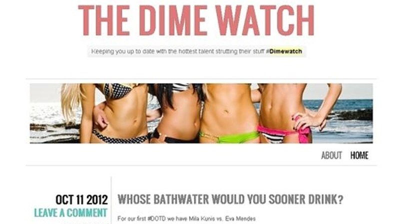 A cached copy of The Dime Watch website, which was taken down on Oct. 25, 2012. (Huffington Post)