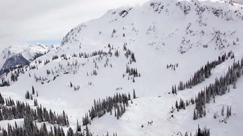 An aerial view of a ski area in Revelstoke, B.C. is seen in this undated file photo. (Jeff Bassett / THE CANADIAN PRESS)