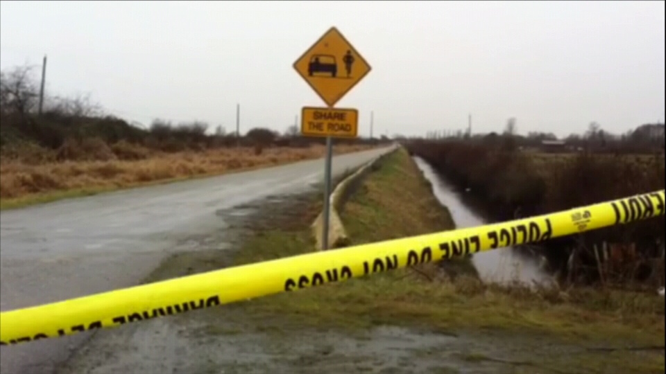 IHIT has been called to investigate the discovery of a body near the Delta Golf Course in Surrey, B.C. Jan. 28, 2013. (CTV)