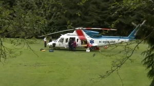 Teen brought to safety after fall down 40-foot emb