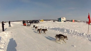 First Story Ep1505 A Dog Sled Adventure