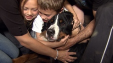 Hurley is reunited with his owners after spending 15 days alone in the wilderness. April 8, 2011. (CTV)