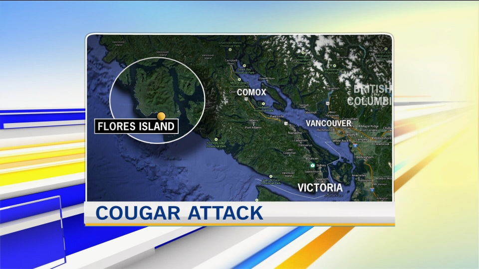 vancouver cougar women Man accused of stabbing his grandfather appears in court vancouver man arrested in new jersey on two cougars spotted in felida the cougar stood.