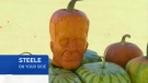 In this week's episode, consumer reporter Lynda Steele looks at some frightening fruit being sold for $75 each in L.A.