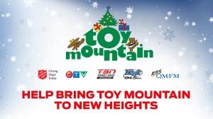 Toy Mountain 2014