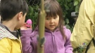 CTV Vancouver: The Last Word: Easter egg hunts