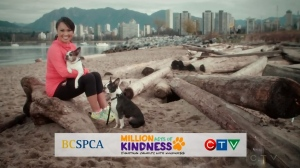 CTV Vancouver: Million Acts of Kindness