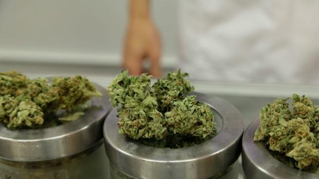 Medical marijuana is on display in Portland, Ore., on June 26, 2015. (The Canadian Press/AP/Gosia Wozniacka)