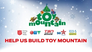 Toy Mountain 2015