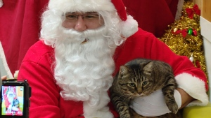 "On Christmas Eve, the big man himself stopped by ""Charlie's Food Bank,"" which is dedicated to caring for the pets of low-income Vancouverites, people living outdoors and seniors. The program, run by the SPCA and Vancouver Food Bank, provides food, grooming and free veterinary care. Dec. 24, 2015. (CTV)"