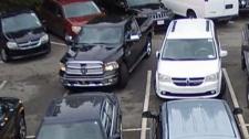 surrey car dealership