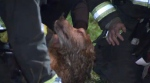 A team of firefighters worked more than 20 minutes to revive a dog suffering from smoke inhalation.