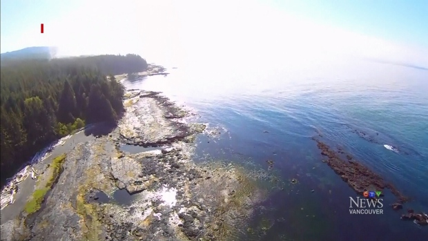 CTV Vancouver: Human foot washes up on beach