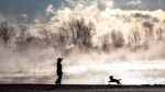 Steam rises as a woman walks her dog on Lake Ontario during extreme cold weather in Toronto on Saturday, February 13, 2016. (Mark Blinch / THE CANADIAN PRESS)
