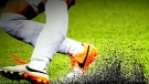 CTV News Channel: Concern over synthetic turf