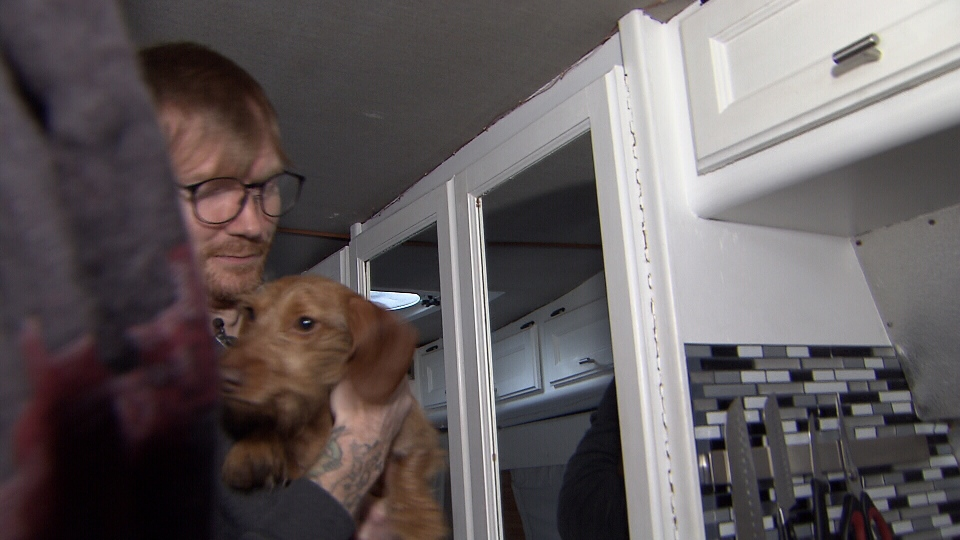 The couple lives with their two dogs in a van in East Vancouver. (CTV)
