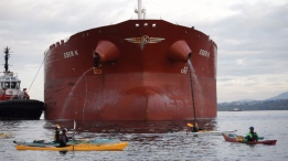 A group of protesters with yellow flags delayed the docking of a large tanker, paddling dangerously close before the port authority stepped in with a warning.  <br><br>The &#39;kayaktivists&#39; are part of Break Free, a world-wide organization trying to &#39;keep fossil fuels in the ground.&#39; (Break Free)
