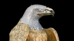 A $9-million eagle statue that is considered by some to be the most expensive contemporary art piece in Canada has been stolen from its owner's backpack. (Handout).