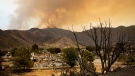 A scorched tree and devastated mobile homes are backdropped by a wildfire continuing to burn, Saturday, June 25, 2016, in South Lake, Calif. (AP / Jae C. Hong)