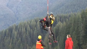 Should rescue crews be made of volunteers?