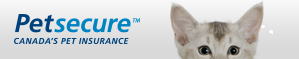 Poll sponsor - cat