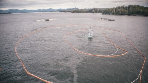 The tugboat Nathan E. Stewart lies submerged at the mouth of the Seaforth Channel near Bella Coola, B.C. (Canadian Coast Guard / THE CANADIAN PRESS)