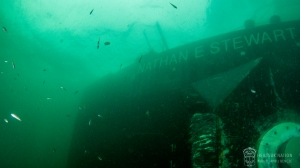 Ten days after a tug ran aground leaking fuel into Heiltsuk First Nation water near Bella Bella, underwater images showed endangered wildlife in the region. (Heiltsuk Nation)
