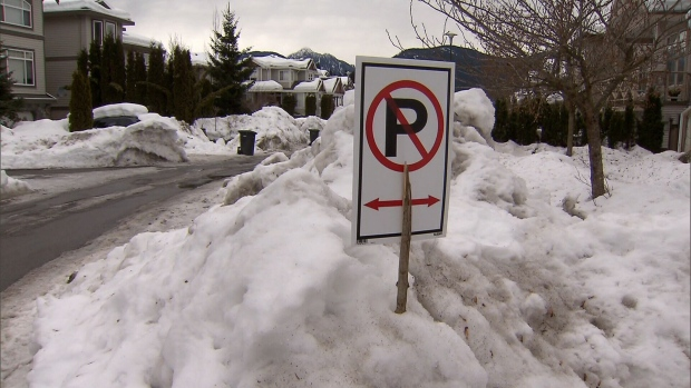 Warming temperatures are expected to melt ice and snow across Metro Vancouver and the Fraser Valley this week, potentially causing flooding if drains and catch basins are blocked. Jan. 16, 2017. (CTV)