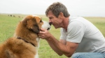 This image released by Universal Pictures shows Dennis Quaid with a dog, voiced by Josh Gad, in a scene from 'A Dog's Purpose.' A spokesman for American Humane said Wednesday, Jan. 18, 2017 that it has suspended its safety representative who worked on the set of the film when a frightened German shepherd, not shown, was forced into churning waters. (Joe Lederer / Universal Pictures via AP)