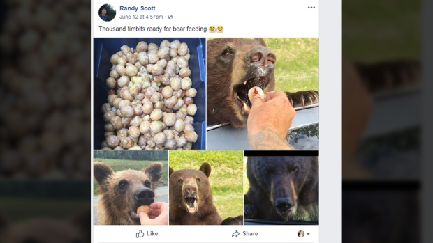 randy scott bears timbits