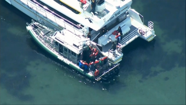 Passengers rescued after B C  whale watching boat hits rock in U S