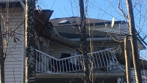 Tree falls into Abbotsford home