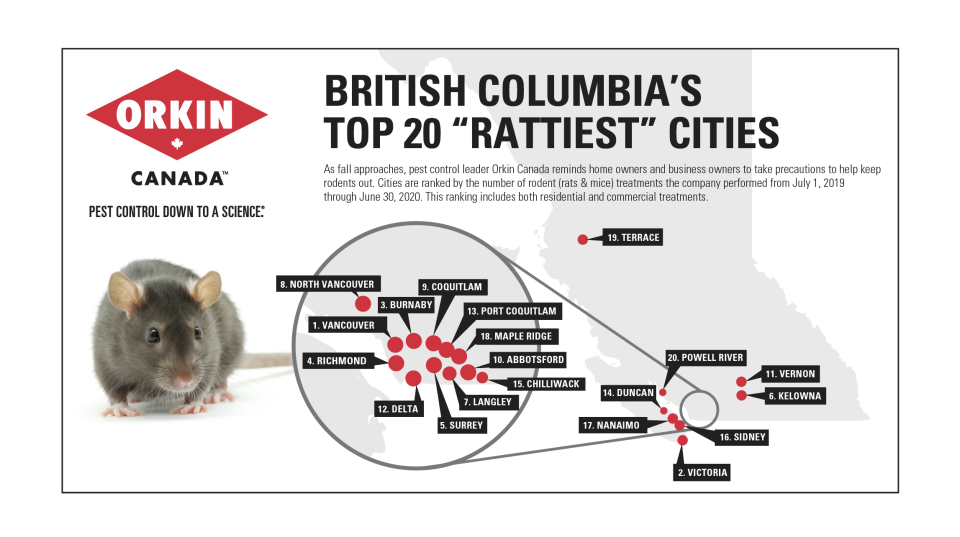 Rattiest cities 2020