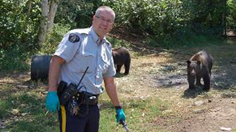 An RCMP officer shows off two black bears found at an alleged marijuana grow-op near Christina Lake, B.C. Aug. 18, 2010. (RCMP)